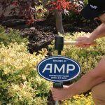 AMP-Security-Customer-Service