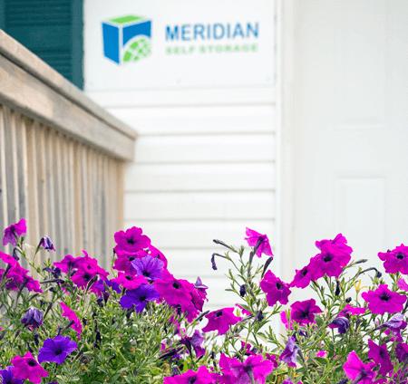 Meridian_b